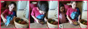 Montessori apple sliving